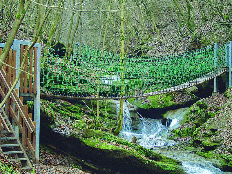 Hängebrücke-Naturpark-Südeifel-12m