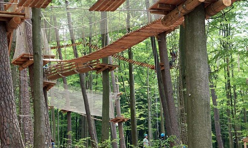 Spessart Forest Rope Course